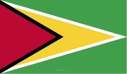 "Aufkleber ""Guyana Flagge"" 100x60"