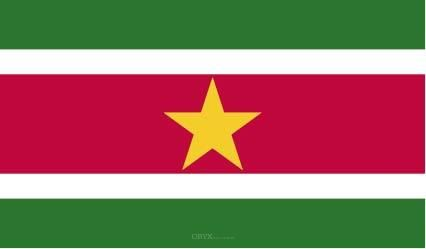 "Aufkleber ""Suriname Flagge"" 100x60"