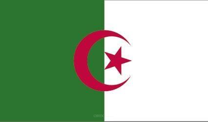 "Aufkleber ""Algerien Flagge"" 100x60"