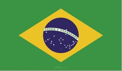 "Aufkleber ""Brasilien Flagge"" 100x60"