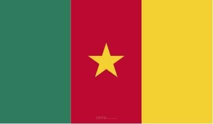 "Aufkleber ""Kamerun Flagge"" 100x60"