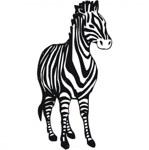 """Aufkleber """"Zebra"""" Version 3 weiß, 500x230"""