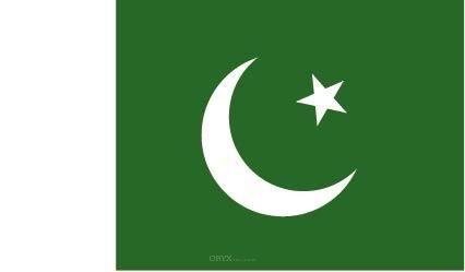 "Aufkleber ""Pakistan Flagge"" 100x60"