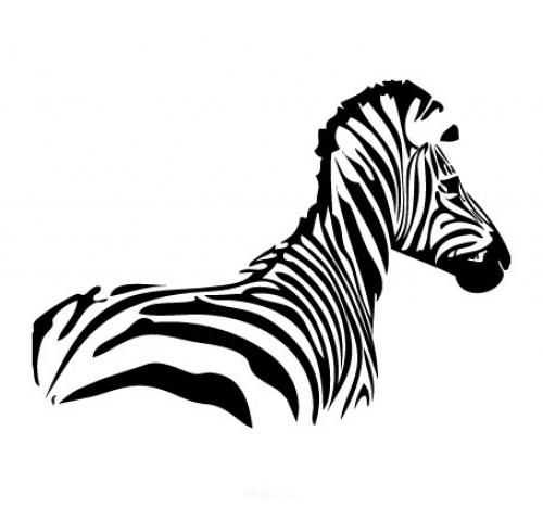 """Aufkleber """"Zebra"""" Version 2 weiß, 800x500"""