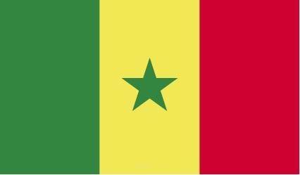 "Aufkleber ""Senegal Flagge"" 100x60"