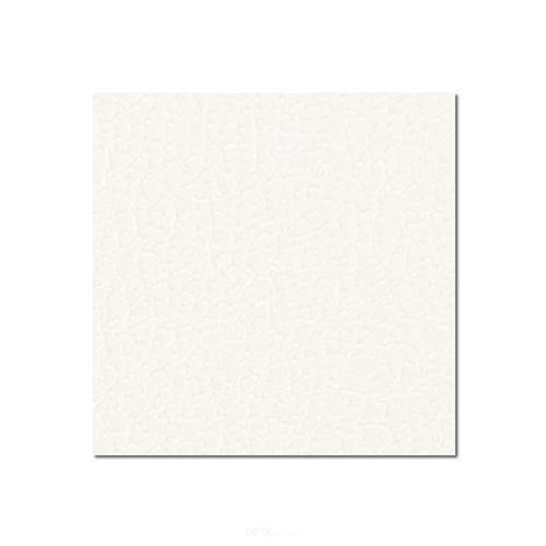125x80cm Birkensperrholz weiß kunststoffbeschichtet mit Gegenzugfolie 6,9 mm