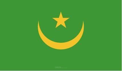 """Aufkleber """"Mauretanien Flagge"""" 100x60"""